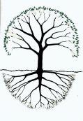 arbreetracines21.jpg